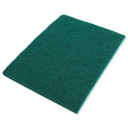 Bentley Abrasive Scourer W150xD225xH5mm Ref SPCSC0110 - Pack 10