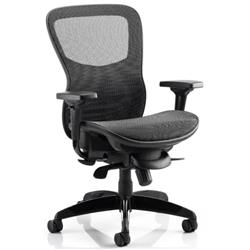 Stealth Ergo Posture Black Mesh Seat And Back Chair With Arms Ref PO000021