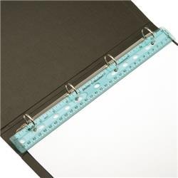 Ringbinder Ruler Shatter-resistant 12inch 300mm Clear