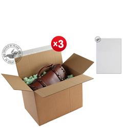 Blakes Postal Box Peel & Seal WxDxH 345x256x130mm Kraft Ref PEB50 [Pack 20] - x3 & FREE Premium Paper